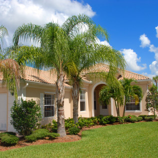 house with palm trees in Largo, FL